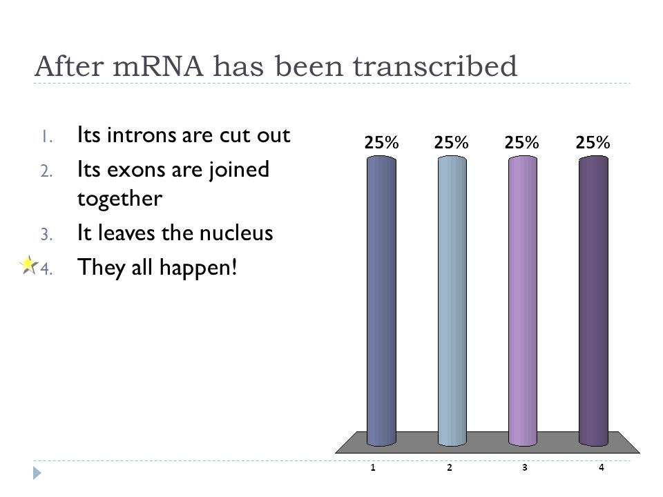 After mRNA has been transcribed