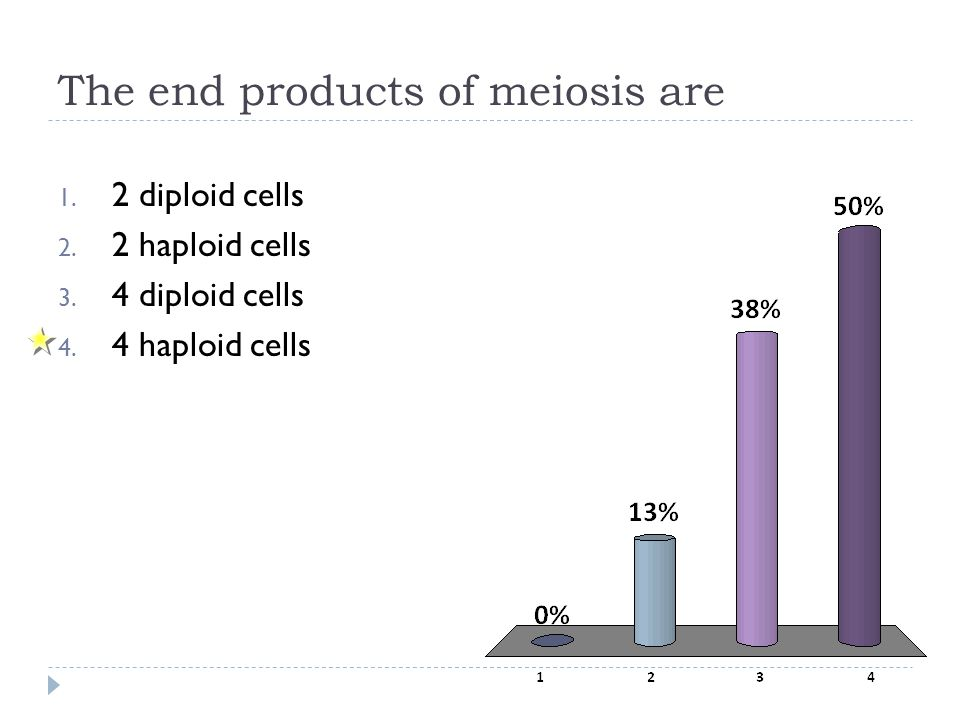 The end products of meiosis are