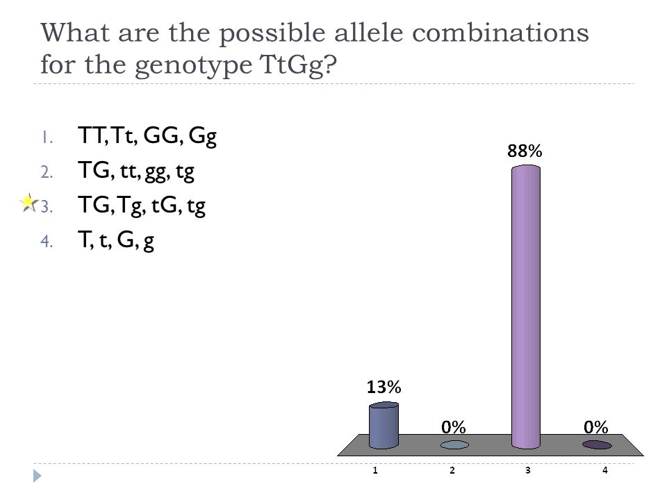 What are the possible allele combinations for the genotype TtGg