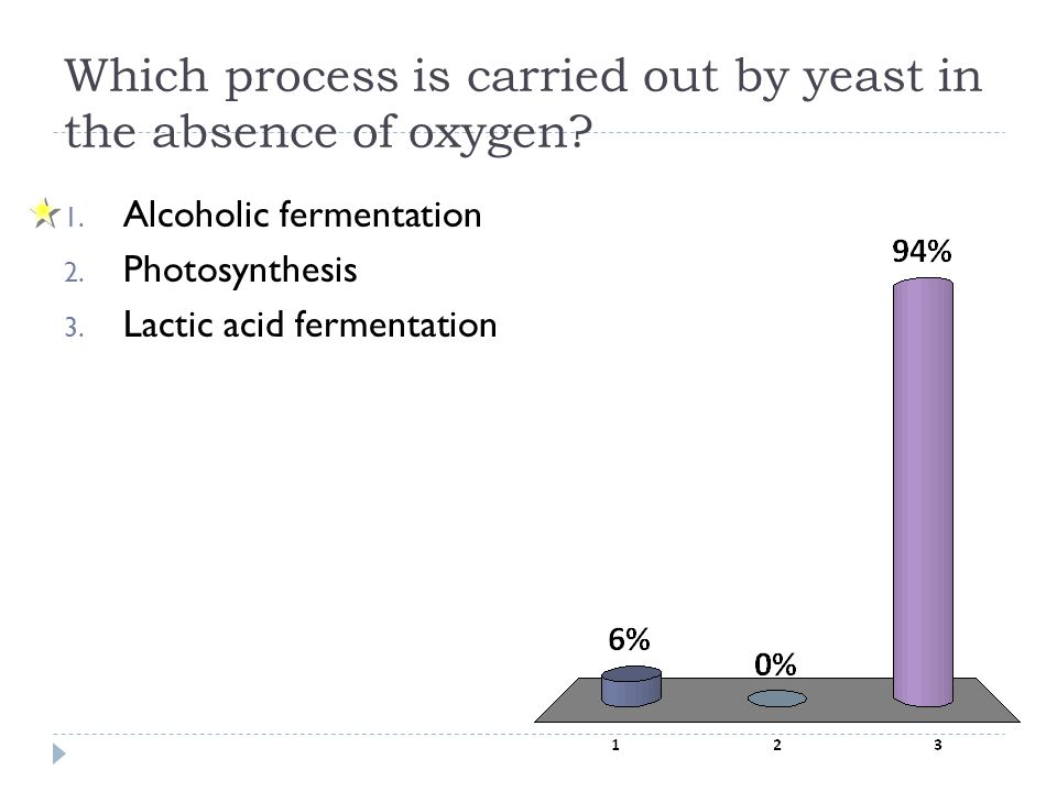 Which process is carried out by yeast in the absence of oxygen