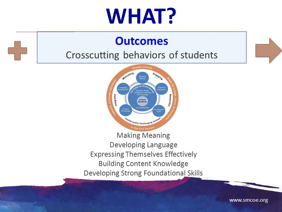 WHAT Outcomes Crosscutting behaviors of students Making Meaning