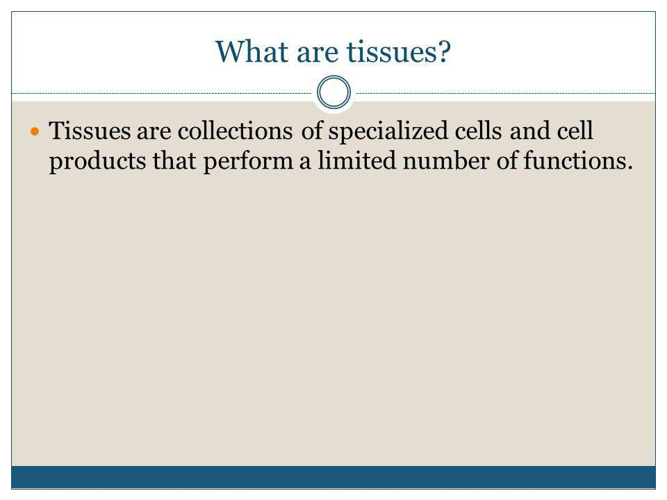What are tissues.