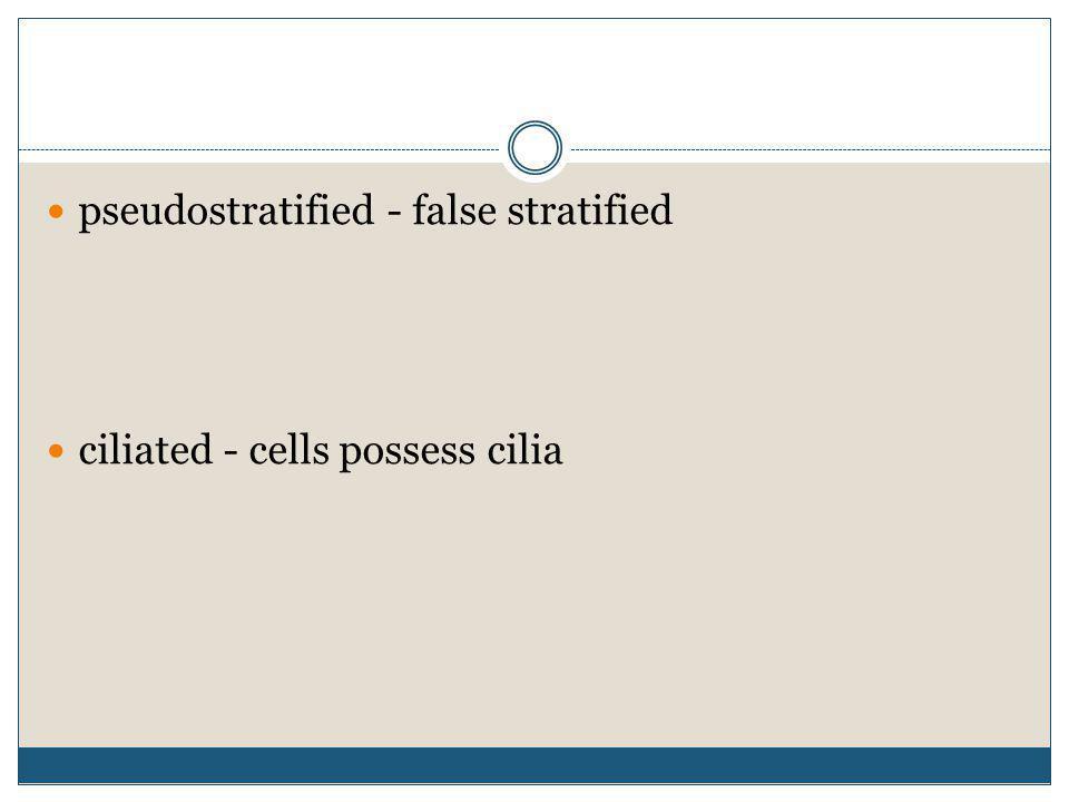 pseudostratified - false stratified