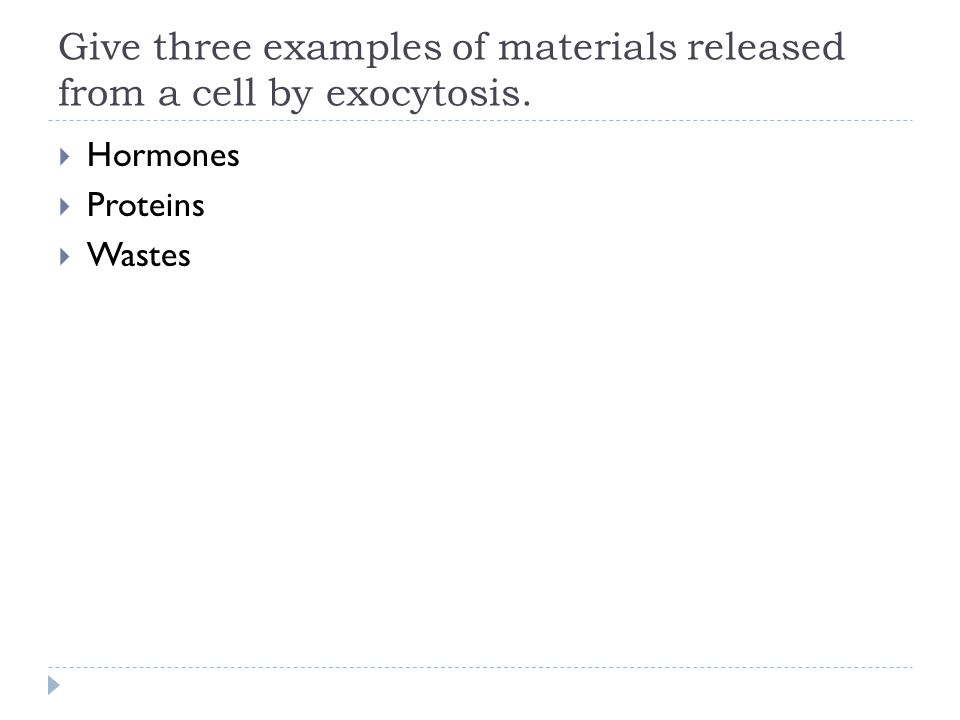 Give three examples of materials released from a cell by exocytosis.
