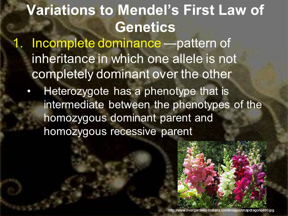Variations to Mendel's First Law of Genetics
