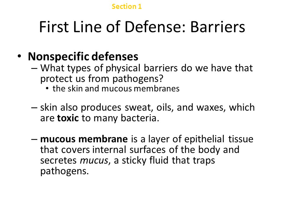 First Line of Defense: Barriers