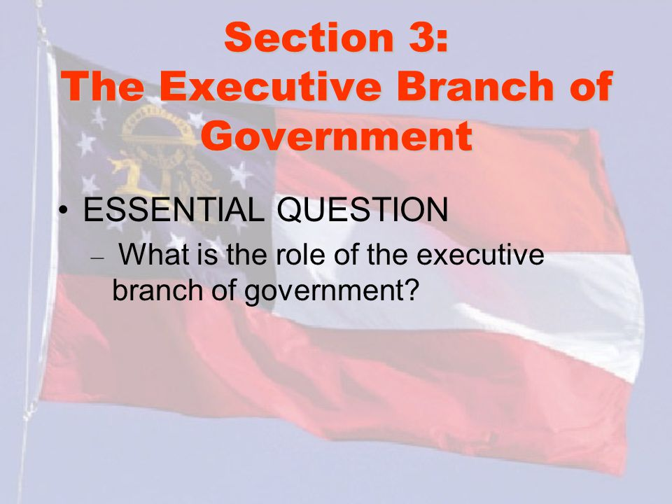 Section 3: The Executive Branch of Government