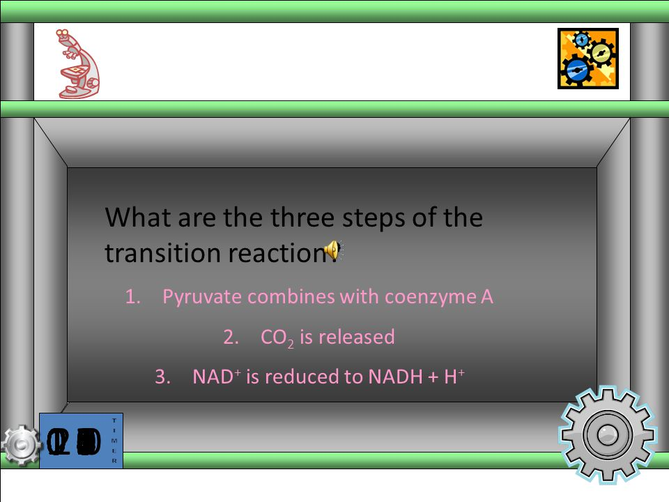 What are the three steps of the transition reaction