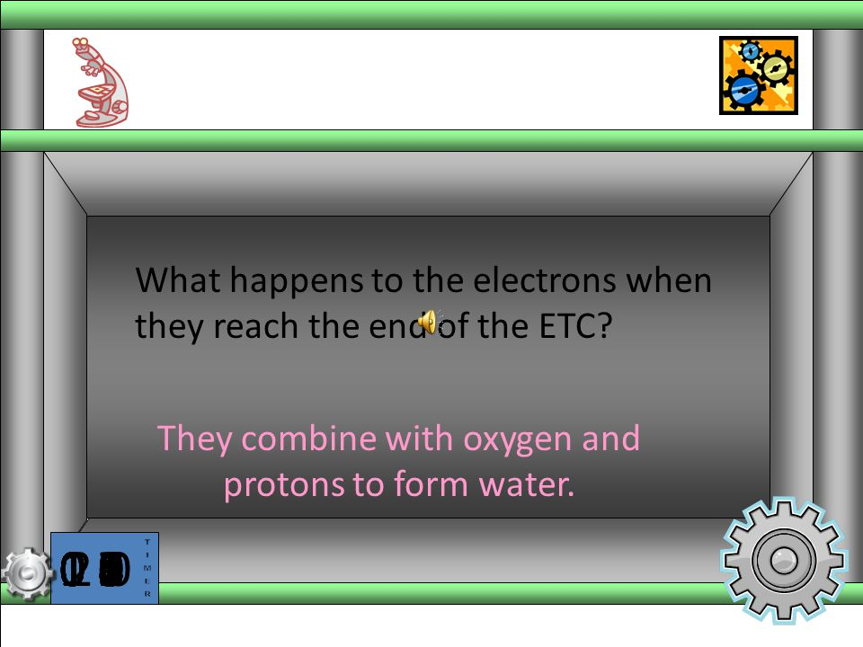 They combine with oxygen and protons to form water.