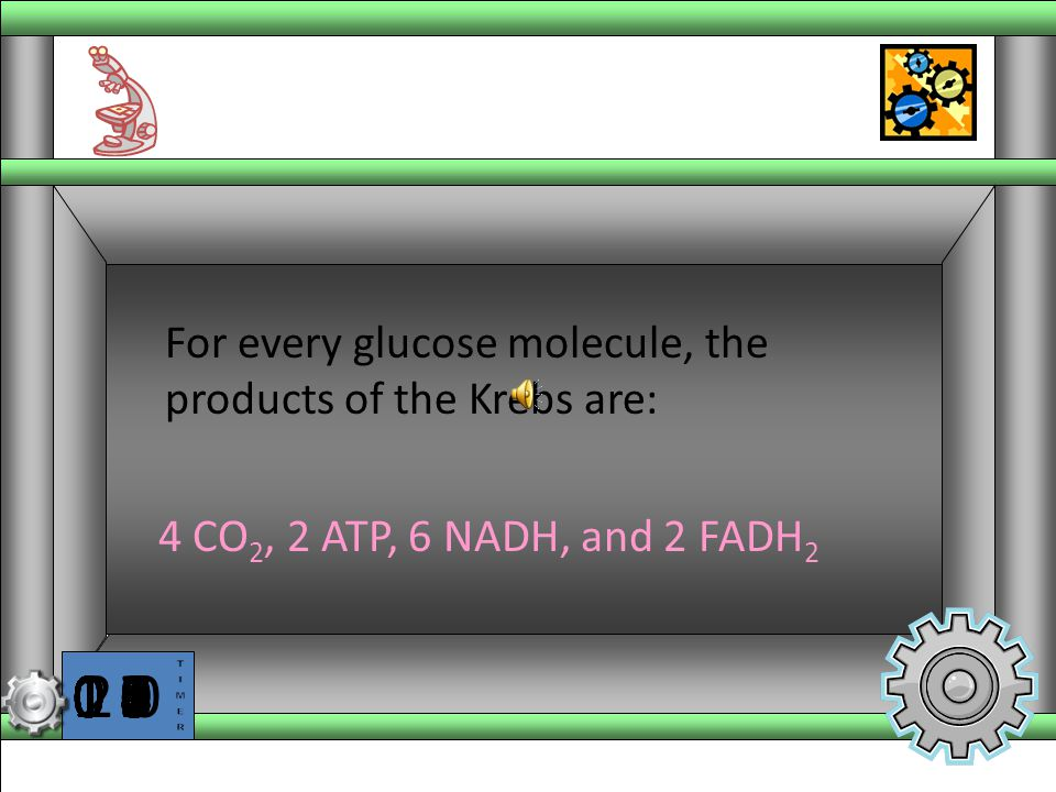 For every glucose molecule, the products of the Krebs are: