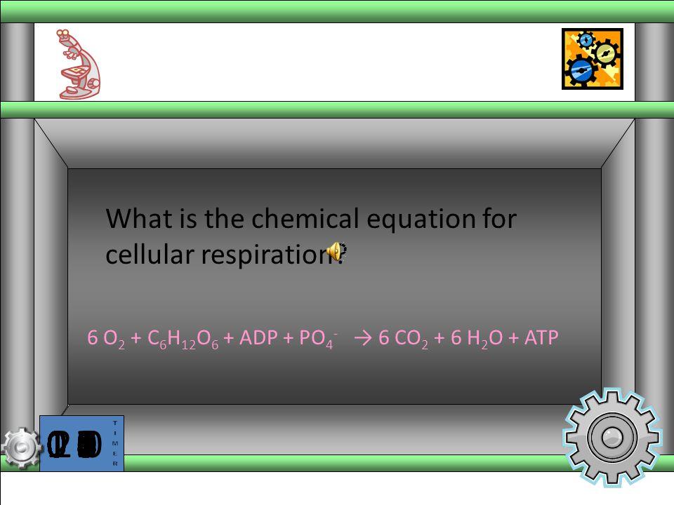6 O2 + C6H12O6 + ADP + PO4- → 6 CO2 + 6 H2O + ATP