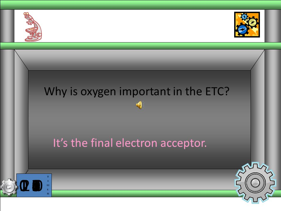 It's the final electron acceptor.