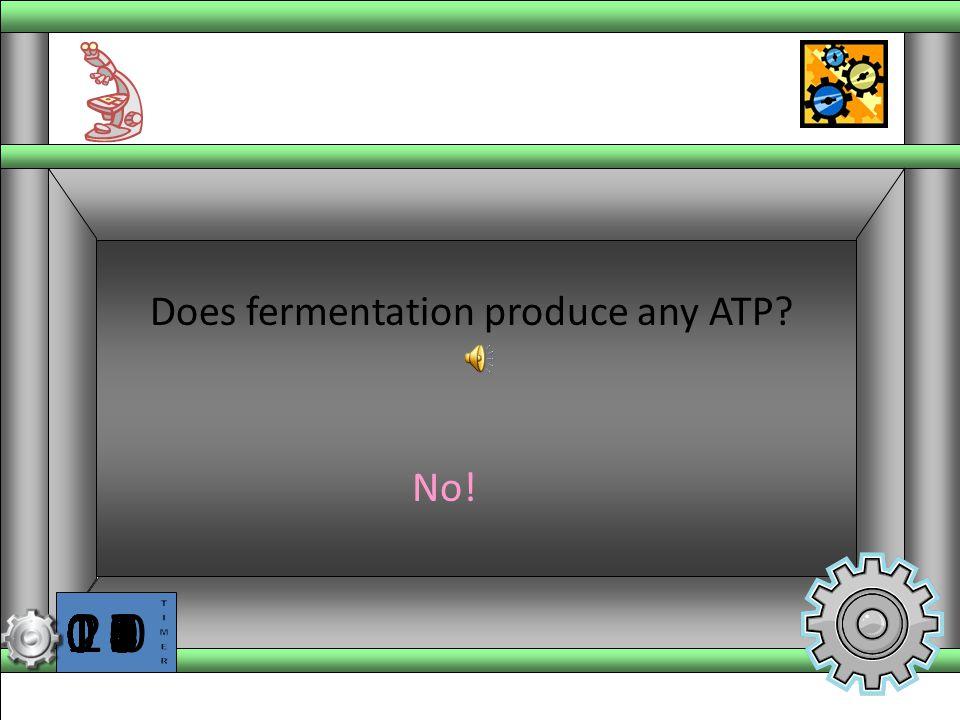 Does fermentation produce any ATP