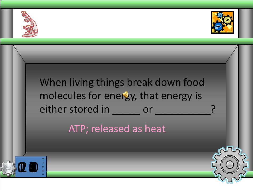 When living things break down food molecules for energy, that energy is either stored in _____ or __________