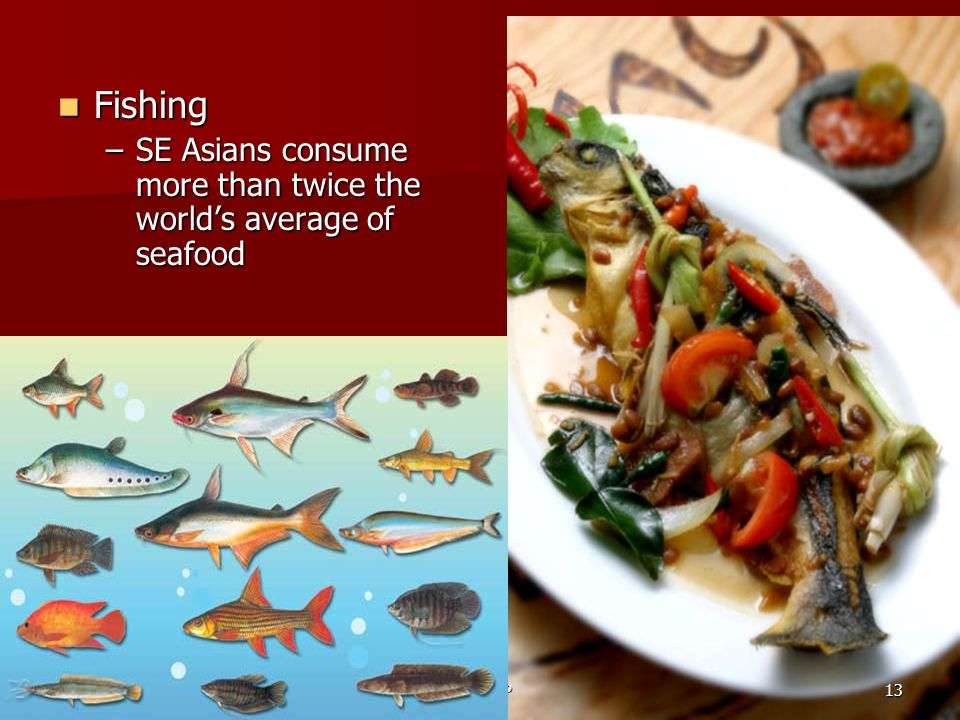 Fishing SE Asians consume more than twice the world's average of seafood Ch 29 PP