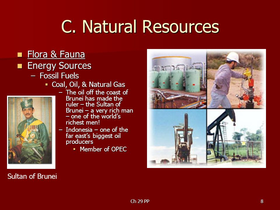 C. Natural Resources Flora & Fauna Energy Sources Fossil Fuels