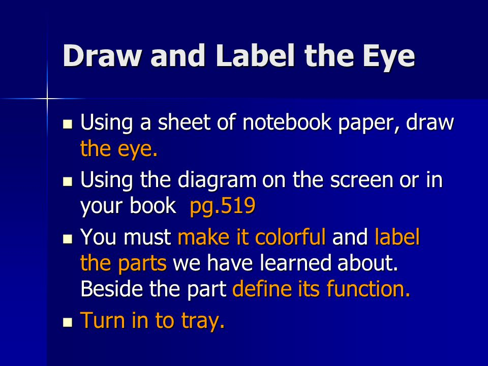 Draw and Label the Eye Using a sheet of notebook paper, draw the eye.