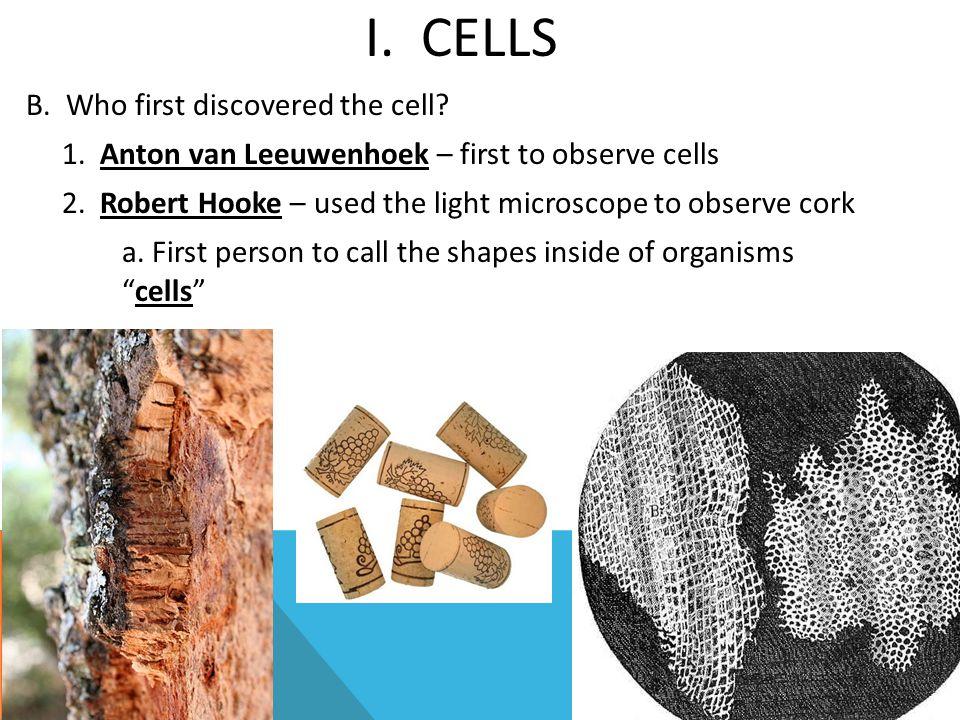 I. Cells
