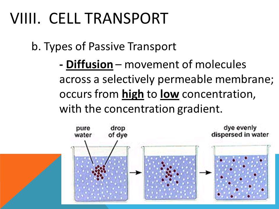 VIIII. Cell Transport
