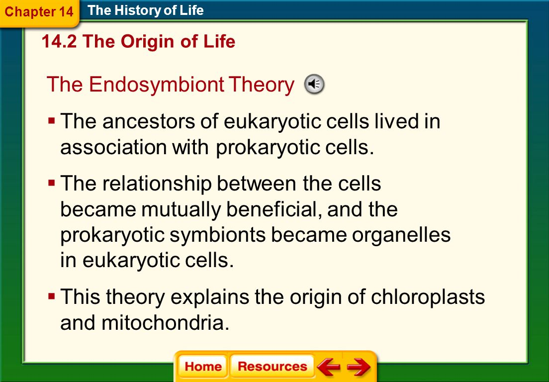 The Endosymbiont Theory