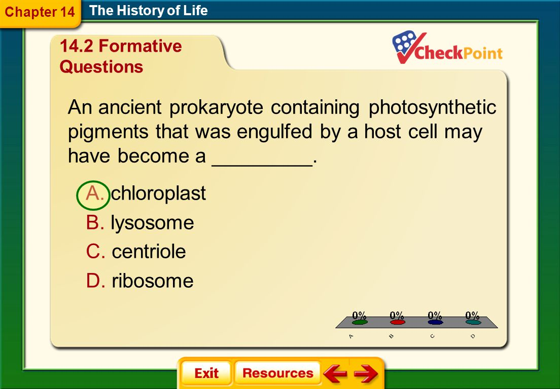 An ancient prokaryote containing photosynthetic