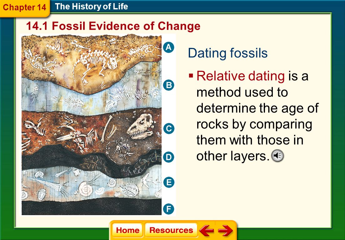 Chapter 14 The History of Life Fossil Evidence of Change. Dating fossils.