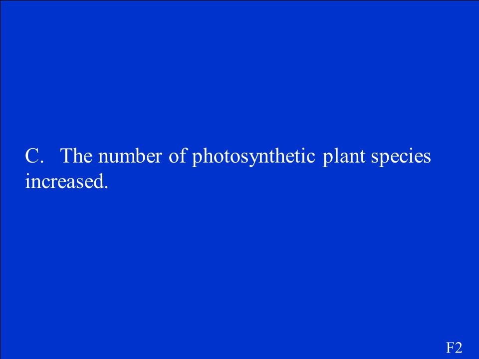 C. The number of photosynthetic plant species increased.