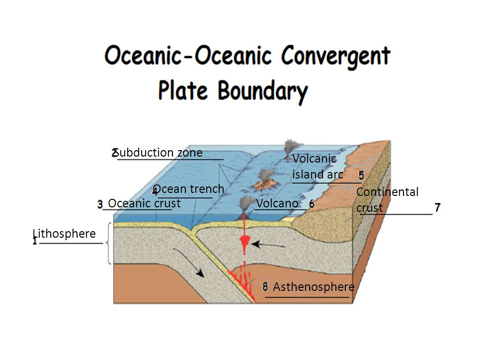 Subduction zone Volcanic island arc. Ocean trench. Continental crust. Oceanic crust. Volcano. Lithosphere.