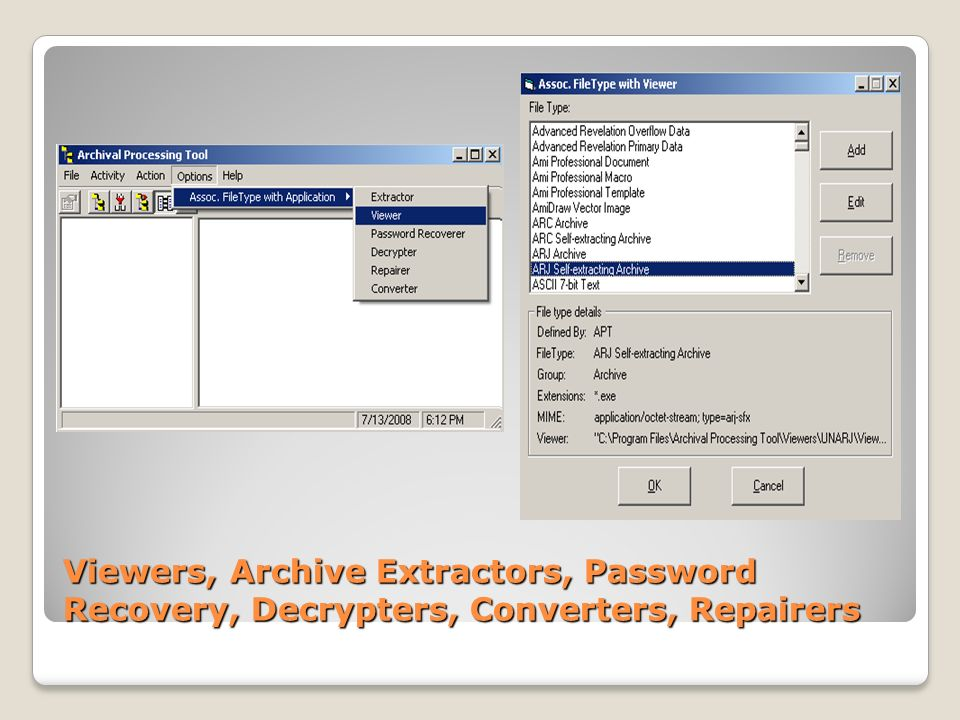 Currently, PERPOS has the capability to recognize about 500 legacy and current file formats or File Types. Most of these can be associated with Viewers. For instance, the picture on the right shows the association of an ARJ Self Extracting file format with a viewer for that file format.