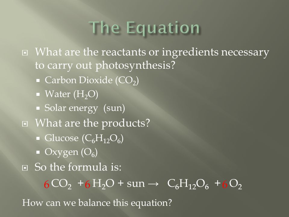 The Equation What are the reactants or ingredients necessary to carry out photosynthesis Carbon Dioxide (CO2)