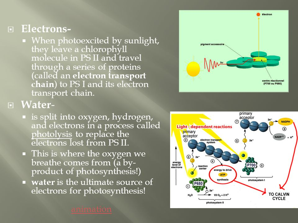 Electrons-