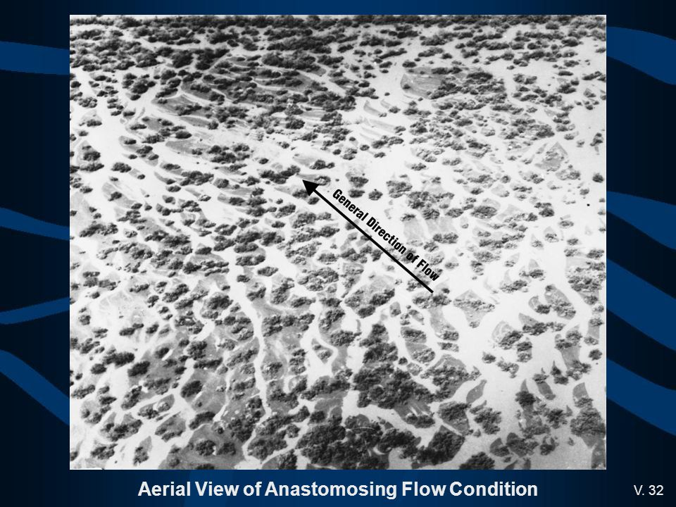 Aerial View of Anastomosing Flow Condition