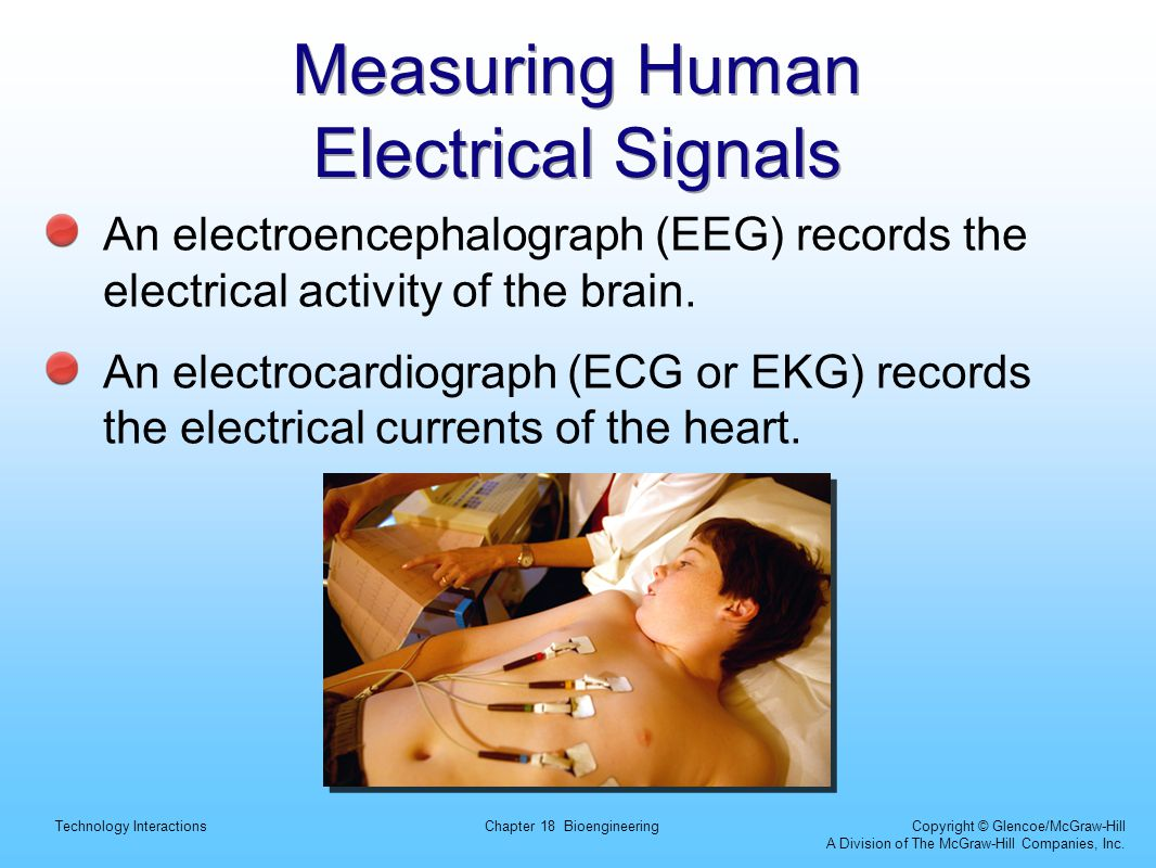 Measuring Human Electrical Signals