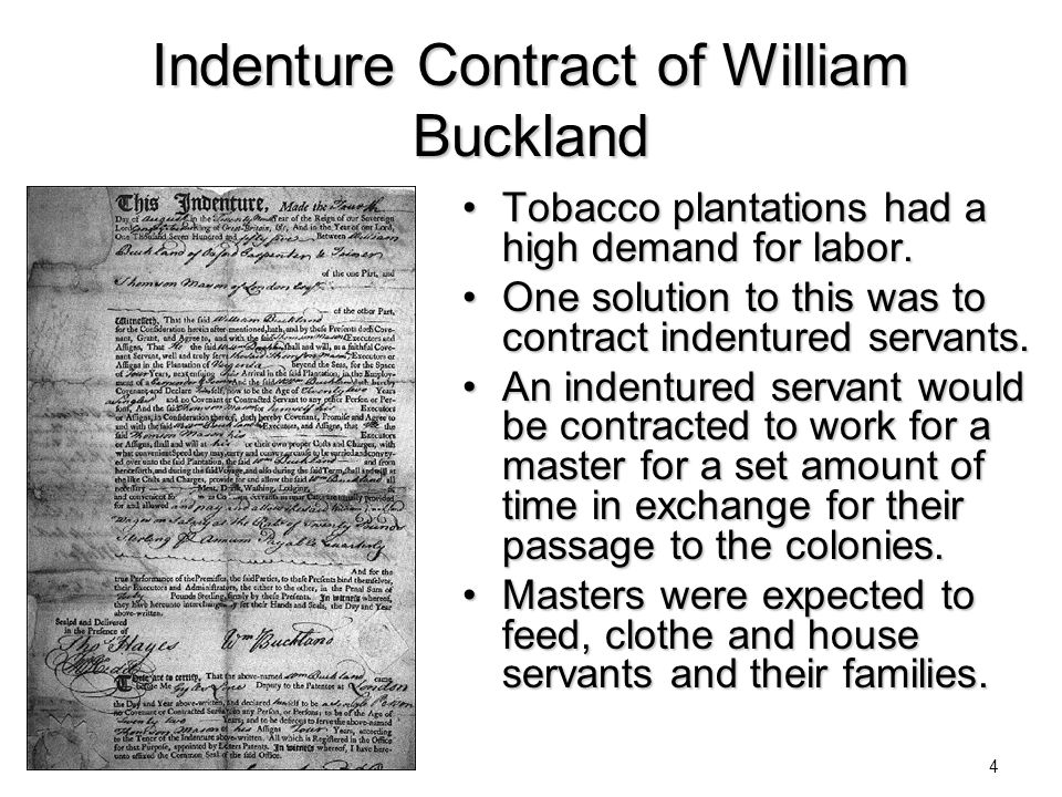Indenture Contract of William Buckland