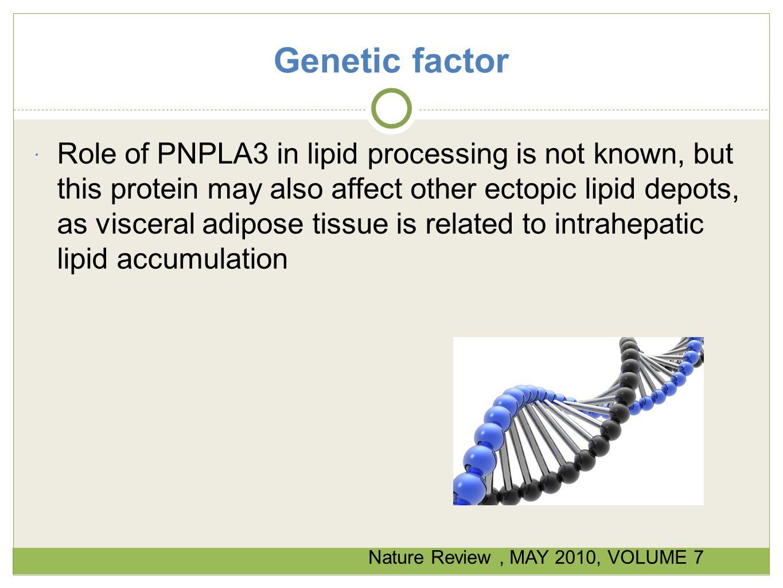 Genetic factor