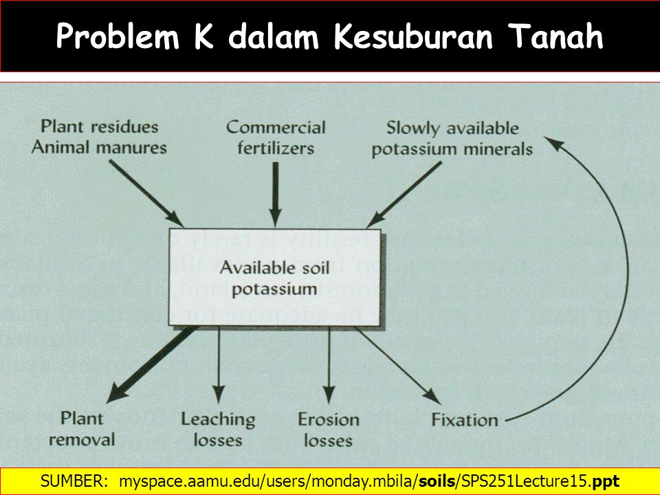Problem K dalam Kesuburan Tanah