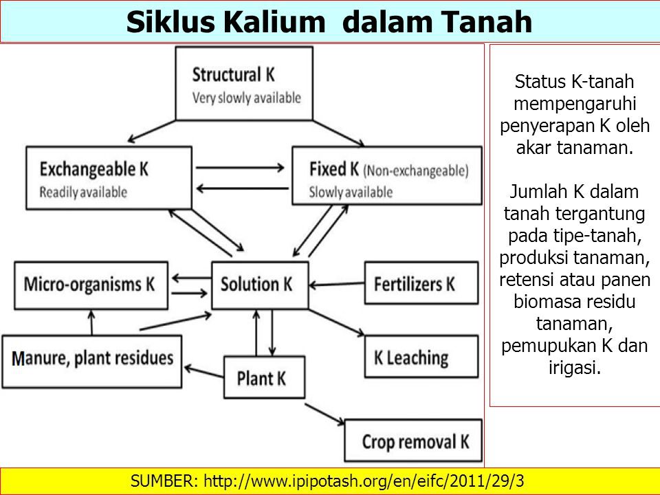 Siklus Kalium dalam Tanah