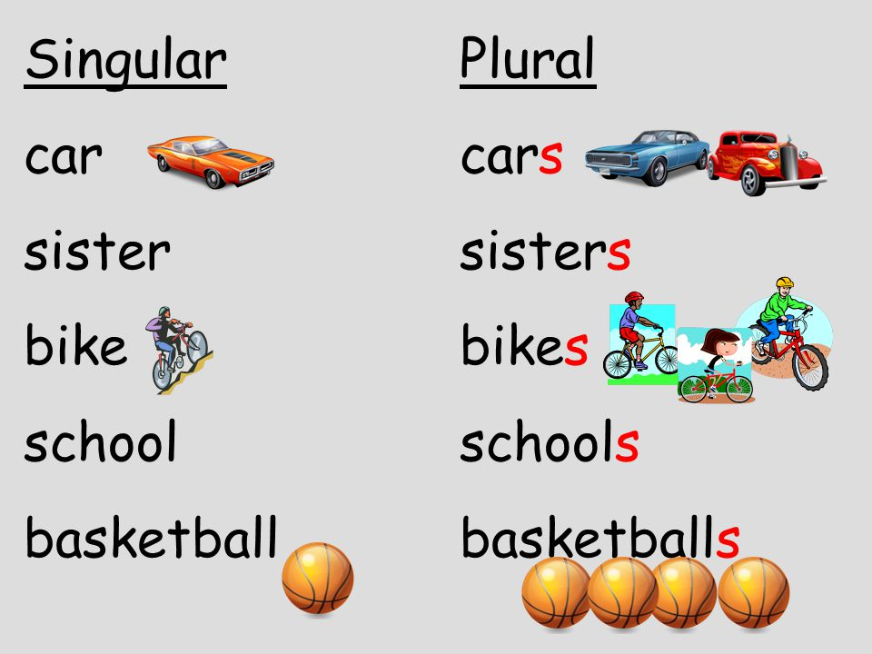 Singular Plural car cars. sister sisters.