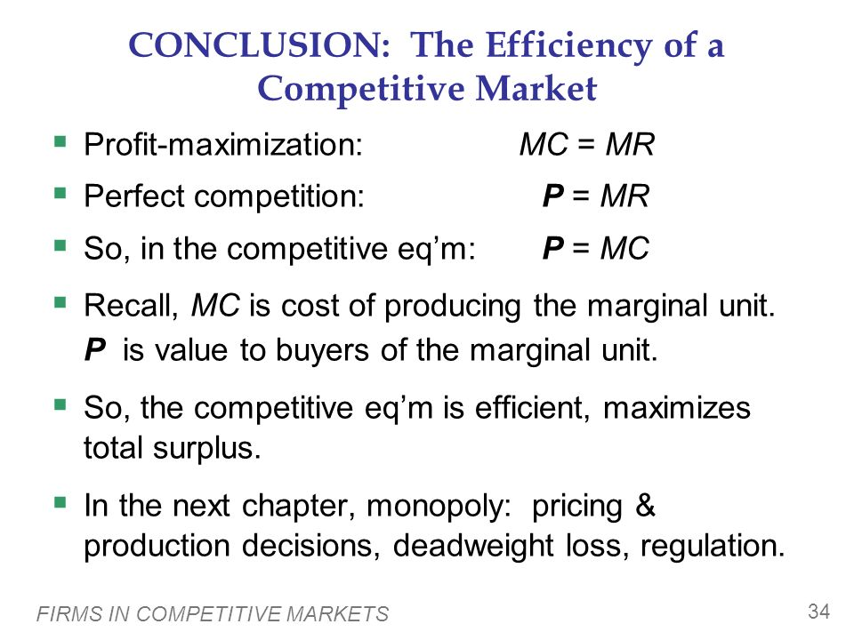 CONCLUSION: The Efficiency of a Competitive Market