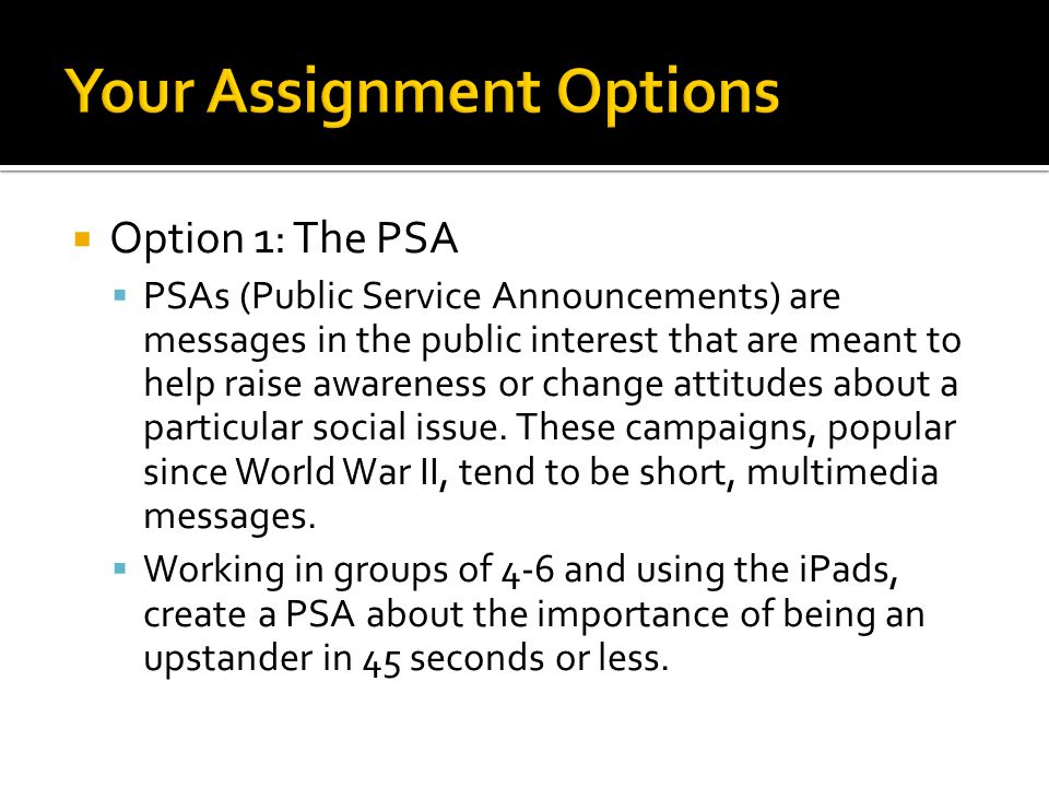 Your Assignment Options