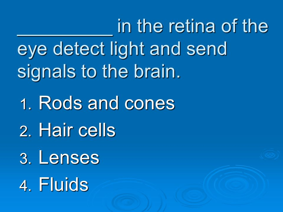 _________ in the retina of the eye detect light and send signals to the brain.