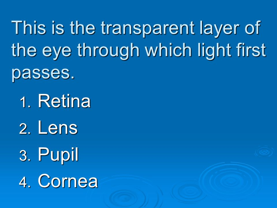 This is the transparent layer of the eye through which light first passes.