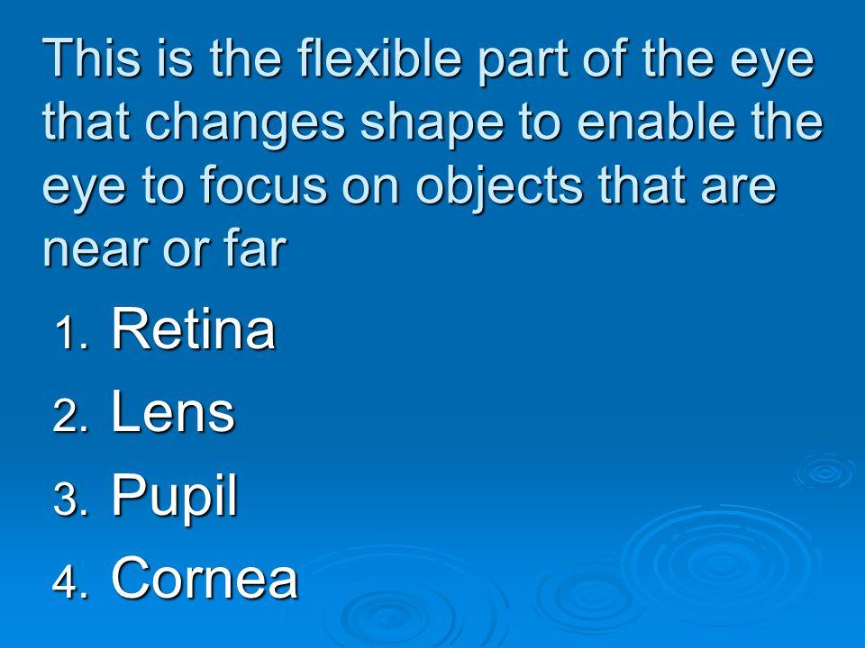Retina Lens Pupil Cornea