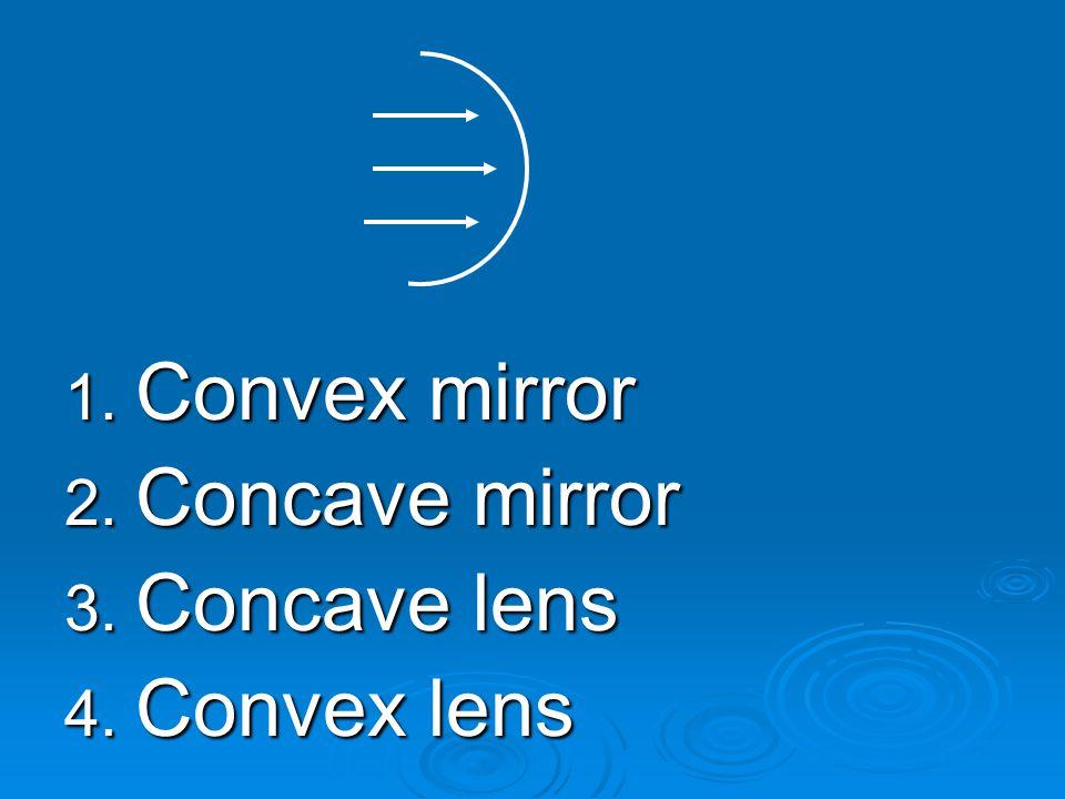 Convex mirror Concave mirror Concave lens Convex lens