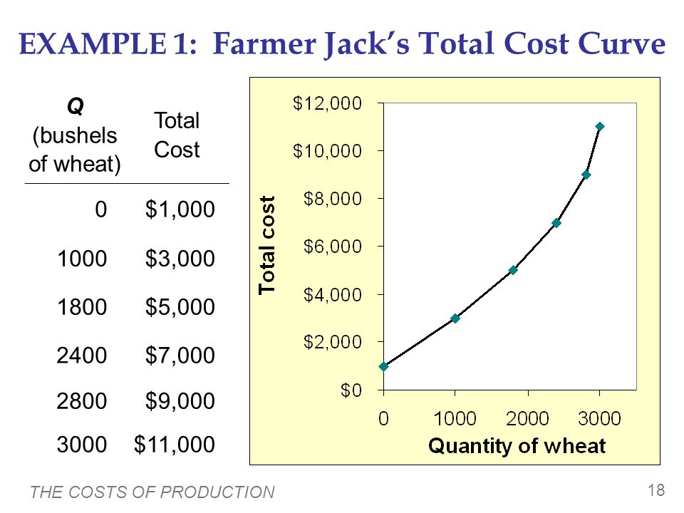 EXAMPLE 1: Farmer Jack's Total Cost Curve