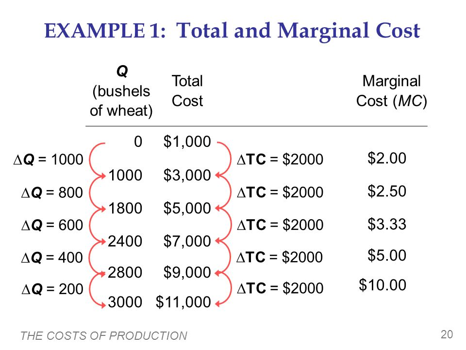 EXAMPLE 1: Total and Marginal Cost