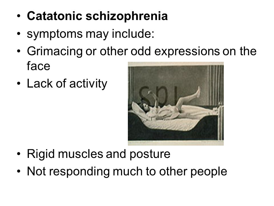 what is catatonic schizophrenia pdf
