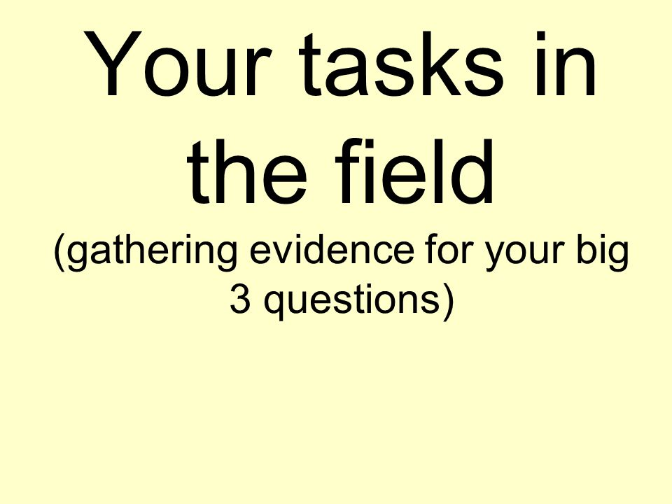 Your tasks in the field (gathering evidence for your big 3 questions)