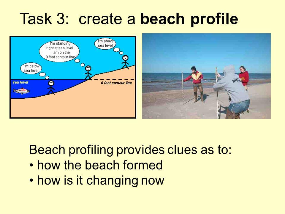 Task 3: create a beach profile