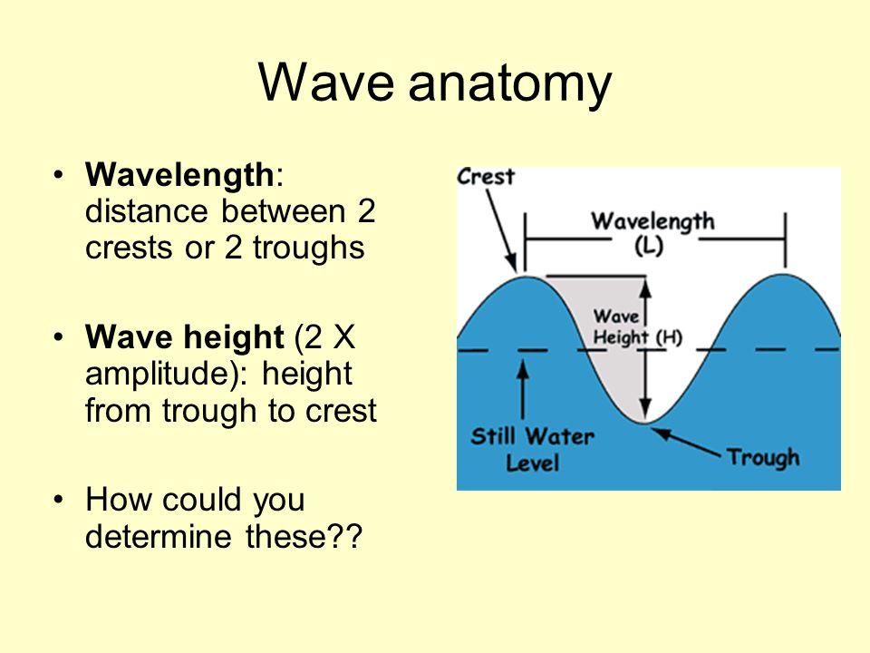 Wave anatomy Wavelength: distance between 2 crests or 2 troughs